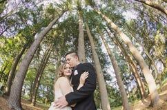 Brud och brudgum som kysser under trees Arkivfoton
