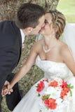 Brud och brudgum som kysser vid trädet Arkivbild