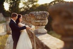 Brud och brudgum som poserar i guld- höstnatur Arkivfoton