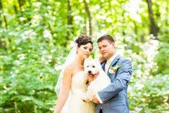 Brud- och brudgumbröllop med utomhus- hundsommar arkivbilder