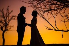 Brud- och brudguminnehavhänder i solnedgången Arkivfoton