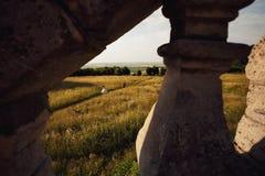 Brud- och brudgumspringen i ett fält nära slotten Fotografering för Bildbyråer