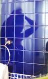 Brud reflexion på tegelplattan Royaltyfri Fotografi