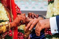 Brud som sätter cirkeln till brudgummen Fotografering för Bildbyråer