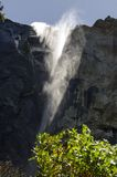 Brud- Yosemite nedgång - Arkivbild