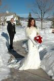brudbrudgum Royaltyfria Foton