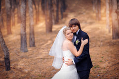 Brudbrudgum på ett bröllop en gå i höstskogen Royaltyfri Foto