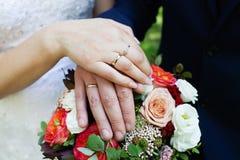 brudbrudgummen hands att gifta sig för cirklar Royaltyfri Foto