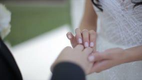 Bruden bär cirkeln på fingret för brudgum` s Brud- och brudgumutbytesvigselringarna stock video