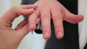 Bruden bär upp på brudgummens finger ett bröllopkläderslut arkivfilmer