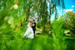 Bruden och brudgummen av gräsplan parkerar Royaltyfria Bilder
