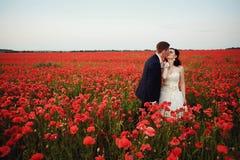 Bruden och brudgummen i ett vallmofält Royaltyfri Fotografi