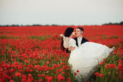 Bruden och brudgummen i ett vallmofält Arkivfoto