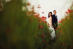 Bruden och brudgummen i grönt vallmofält Royaltyfri Bild