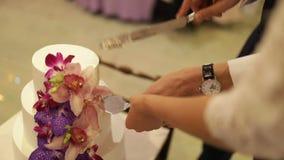 Bruden och brudgummen klippte kakan med nya blommor arkivfilmer