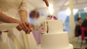 Bruden och brudgummen klippte kakan med nya blommor lager videofilmer