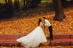 Bruden och brudgummen kysser anseende på de olika bänkarna i PA Arkivfoton