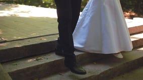 Bruden och brudgummen promenerar parkeragränden stock video
