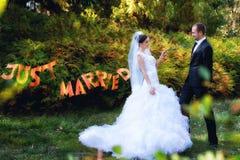 Bruden och brudgummen som in poserar, parkerar Royaltyfri Fotografi