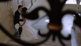 Bruden och brudgummen tycker sig om stock video