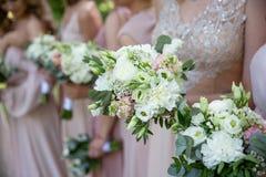 Bruden och brudtärnor i rosa klänningar når ut deras händer med mjuka bröllopbuketter royaltyfri bild