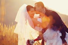 Bruden rymmer brudgummens hals, medan han kysser henne i strålarna av solar arkivbilder