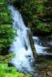 Bruden skyler vattenfallet Royaltyfri Fotografi