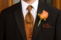 brudgum royaltyfri bild