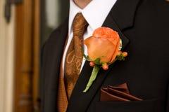 brudgum Arkivfoto