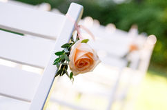 Brudgum brud, vigselringar, brud- bukett Arkivbilder