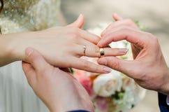 Brudgum brud, vigselringar, brud- bukett Royaltyfri Fotografi
