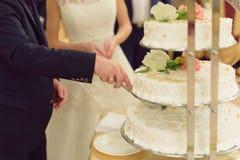 Brudgum Cutting Cake royaltyfri bild