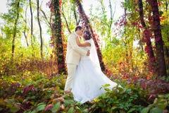Brudgum och brud Royaltyfria Bilder