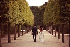 Brudgum och brud i Schonbrunn trädgårdar Arkivfoton