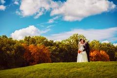 Brudgum och brud som kysser på grönt fält royaltyfri foto