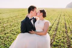 Brudgummen är hållande och kyssa fältet för bruden på våren arkivfoton