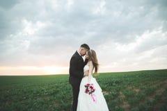 Brudgummen är hållande och kyssa hans brud på bakgrundssolnedgången arkivbild