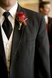 Brudgummen Royaltyfria Foton