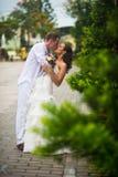 Brudgummen kysser bruden Gifta sig par som kysser i mitt av gröna träd Arkivbild