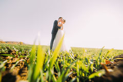 Brudgummen kysser bruden på kinden i det gröna fältet Ner beskåda arkivbild