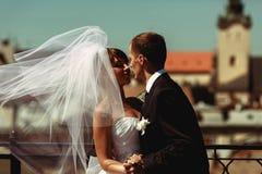 Brudgummen kysser en bruddans med henne på taket i en blåsig wea royaltyfria bilder