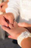 Brudgummen ringer bruden Fotografering för Bildbyråer