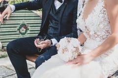 Brudgummen ser den gamla rovan royaltyfri fotografi