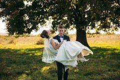 Brudgummen tar bruden i hans armar och bar henne till fältet i bakgrund av det stora trädet Brudgummen kysser bruden royaltyfria bilder