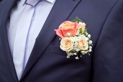 Brudgums boutonniere av rosor Royaltyfria Bilder