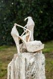 brudhandbenet shoes kvinnabarn Royaltyfri Fotografi