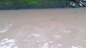 Brudna bieżąca woda przy kanałem zbiory