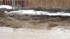 Brudna brown woda rzeczna i śmieci zdjęcie wideo
