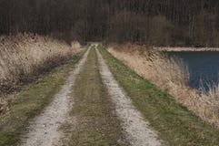 Brudna droga obok jeziora Zdjęcia Royalty Free