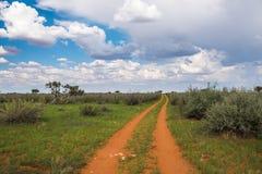 Brudna droga w Kalahari pustyni Obraz Royalty Free